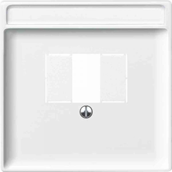 Zentralplatte TAE System Fläche polws glz